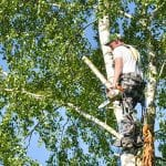 Complete Tree Service of St. Louis